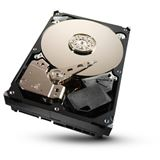 "1000GB Seagate Barracuda 7200.11 ST310005N1D1AS-RK 32MB 3.5"" (8.9cm) SATA 3Gb/s"