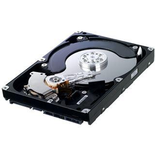 """1500GB Samsung EcoGreen F2 HD154UI 32MB 3.5"""" (8.9cm) SATA 3Gb/s"""