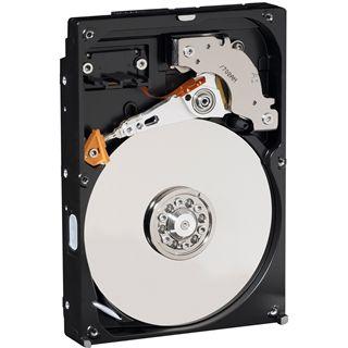 """160GB WD AV Serie WD1600AVJS 8MB 3.5"""" (8.9cm) SATA 3Gb/s"""