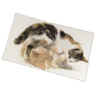 Hama Reinigungs-/Schutztuch Cats, 39,0 x 25,0 cm