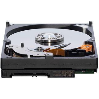 """250GB WD AV Serie WD2500AVVS 8MB 3.5"""" (8.9cm) SATA 3Gb/s"""