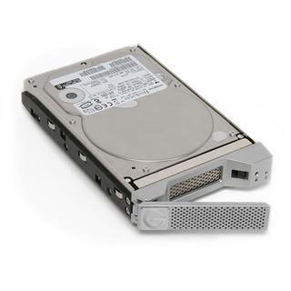 1000GB Hitachi G-SAFE 0G00026 Extern Firewire/SATA 3Gb/s/USB 2.0 silber